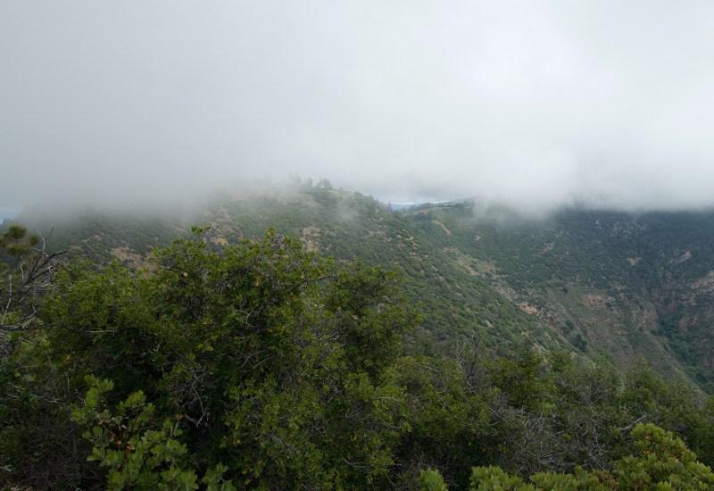 Looking toward Zaca Peak