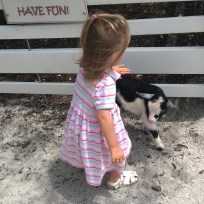 Precious petting