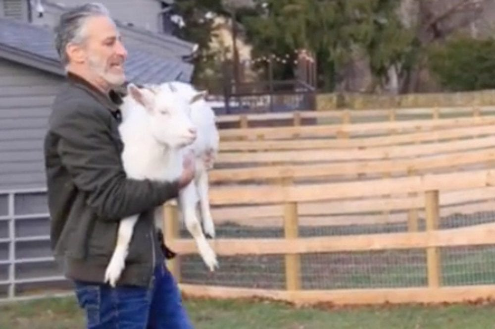 Tracy Stewart Created an Animal Sanctuary With Her Husband Jon