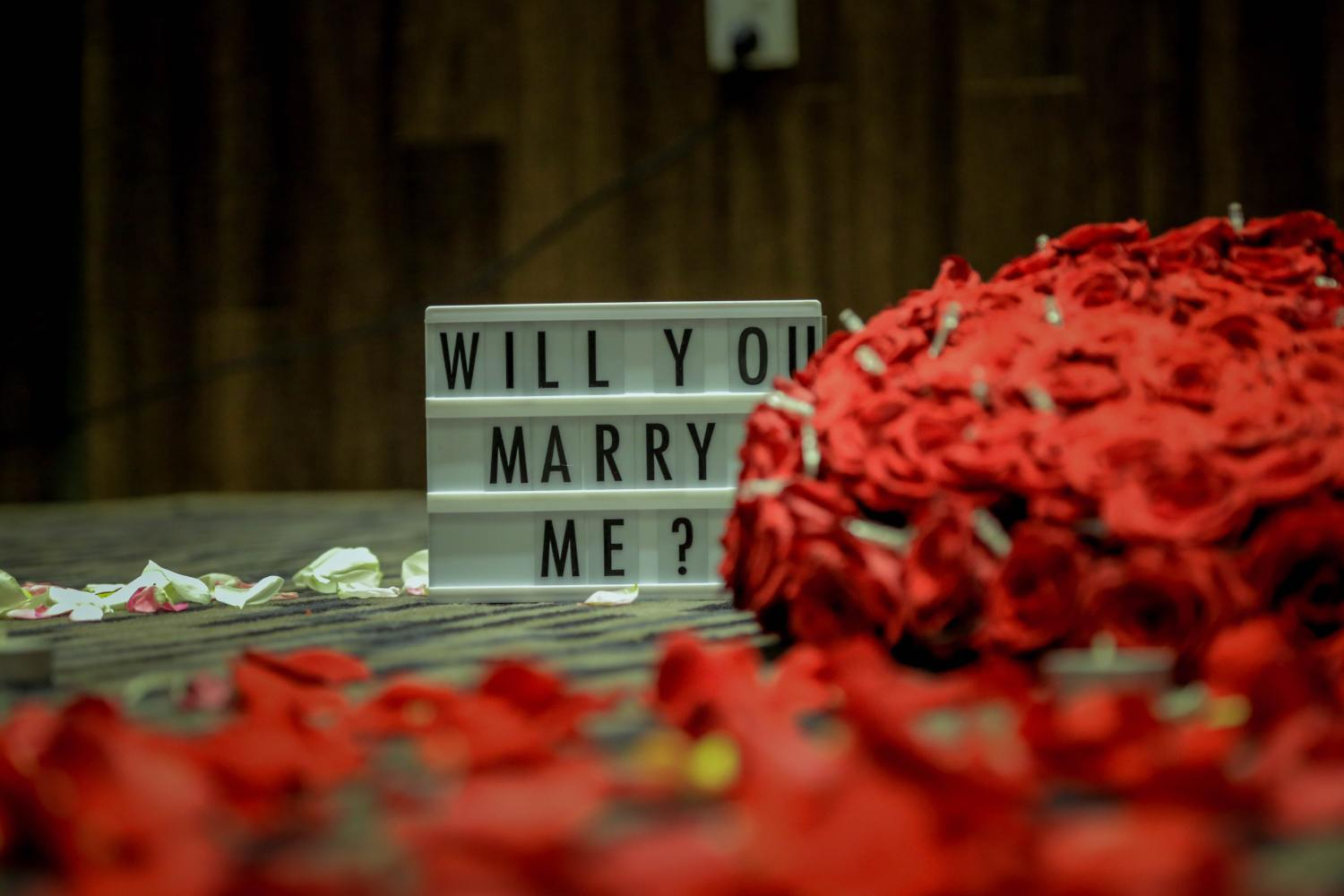 "Genius Proposal Ideas To Get An Enthusiastic ""Yes"""