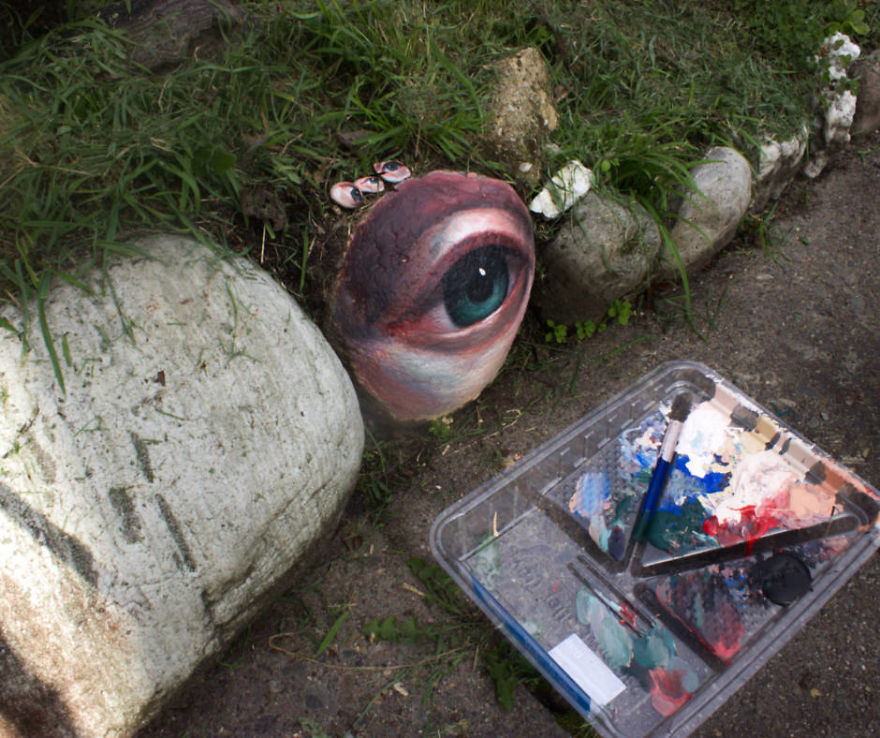 artist jennifer allnutt collects rocks and paints eyes on them. then puts them back into a landscape to be found or lost forever