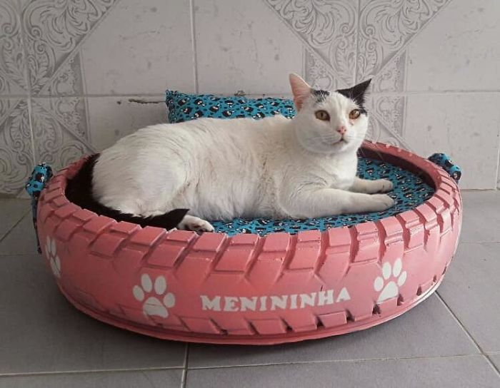 artist creates gorgeous beds for animals from the old tires people throw in the streets