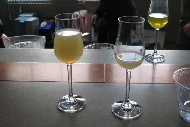 9 of the most dangerous drinks to order at the bar. holy hangover!