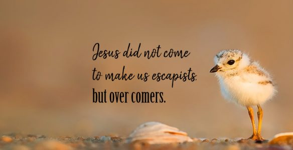 Jesus Makes Us Over Comers