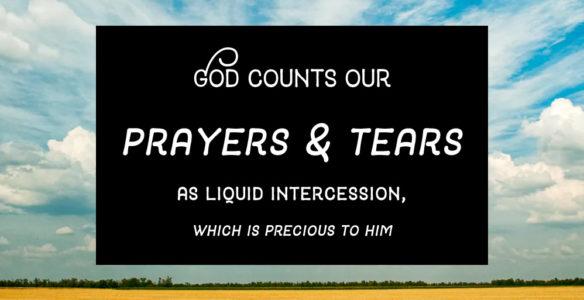 Consolation: God's Holy Alternate