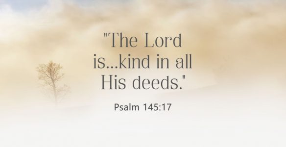 Fruit of Kindness