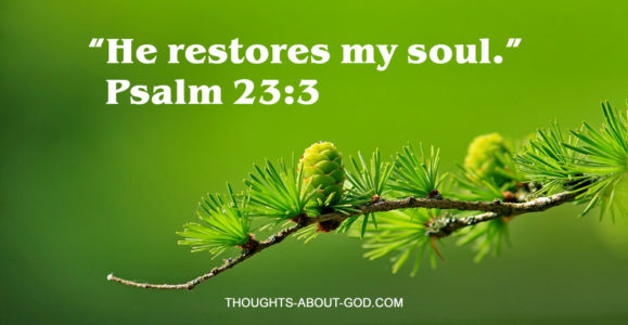 He Restores my soul. Psalm 23:3