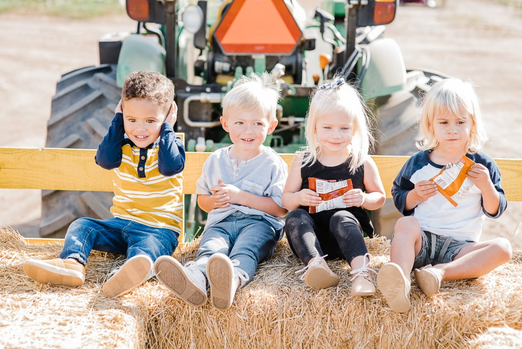 A trip to the pumpkin patch with twins | San Diego Mom Blogger