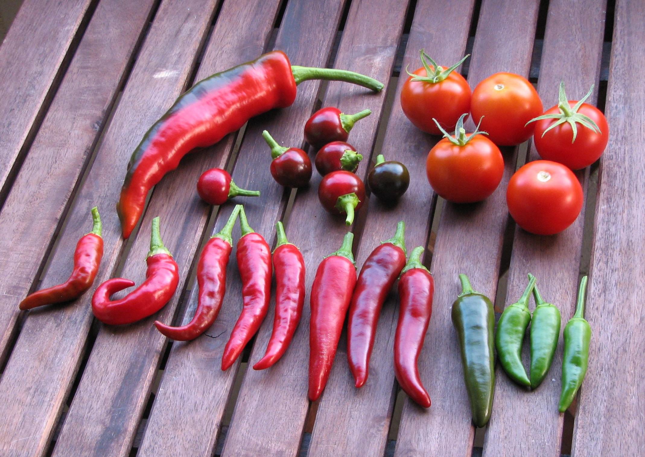 Organic Vs Conventional Food