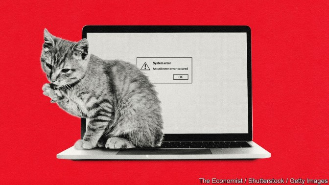 """Cat next to laptop which has on-screen """"System error"""""""