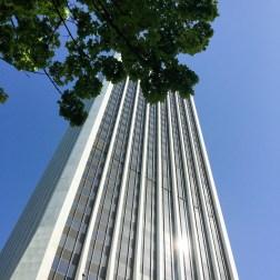 Walking around Portland, looking up.