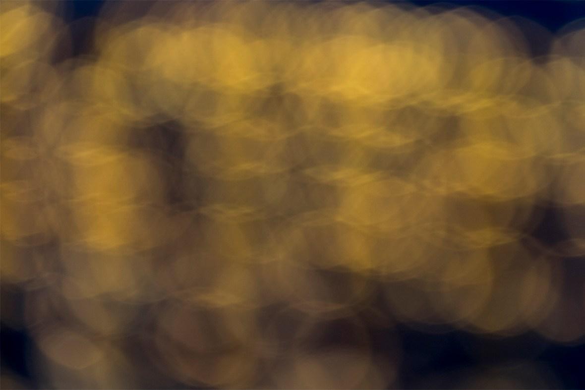 lights_dscf6704