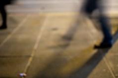 pedestrians_dscf7196