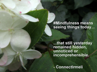 "365/259 ""Mindfulness means..."", Sep...."