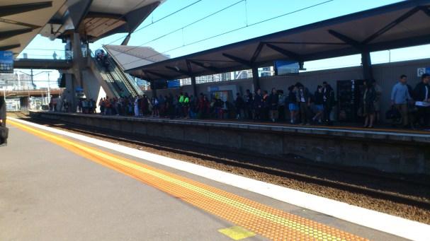 North Melbourne 5
