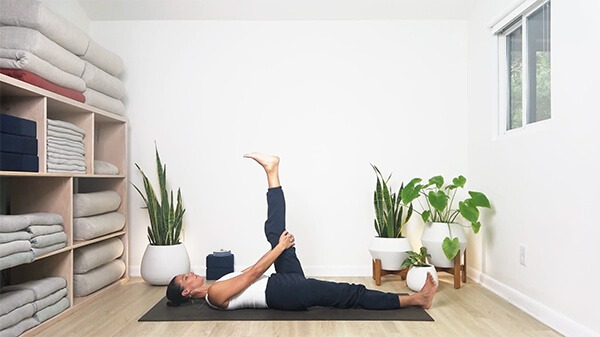 Sommer Leg Extension