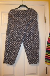 Talbots patterned capris...ignore the funky hanger/hip thing going on
