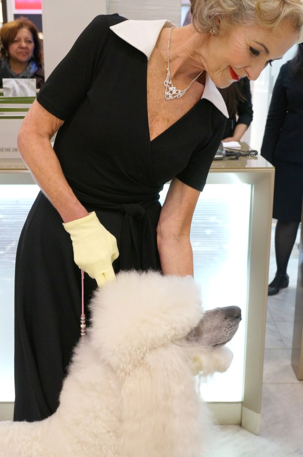 glamorous lady with poodle