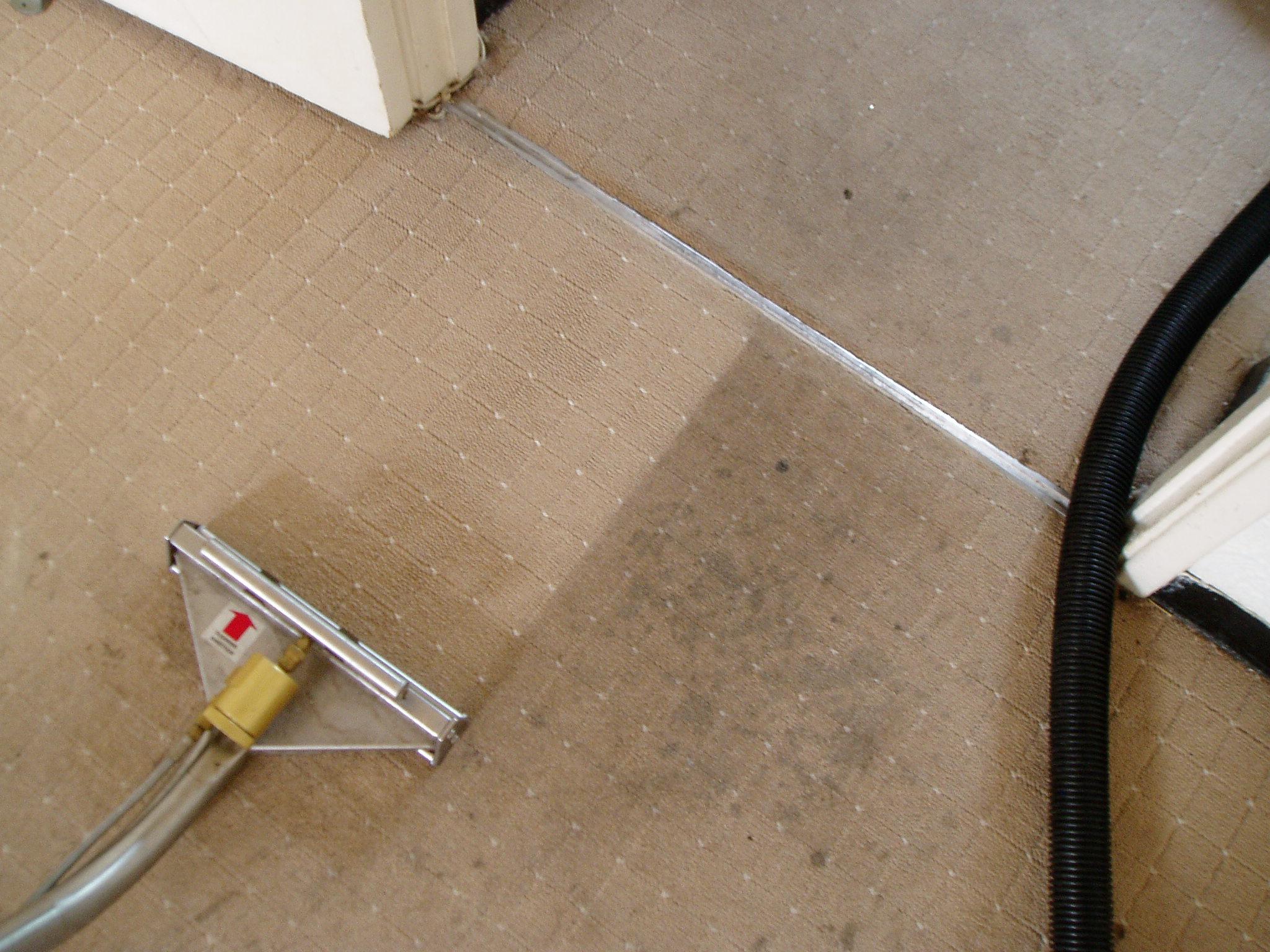 carpet steam cleaner uk vidalondon