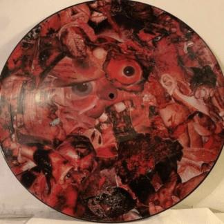 Carcass – Symphonies Of Sickness Orig. Picture Disc LE 1990 Earache MOSH18P EX 1