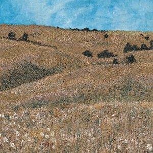 Prairie Wildflowers thread painted art by Bridget O'Flaherty
