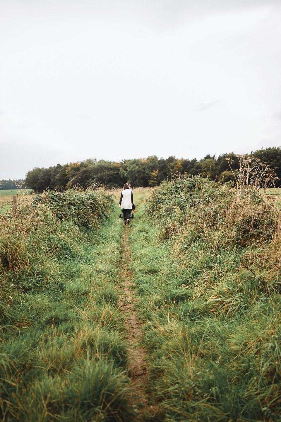 Walk through the English Countryside