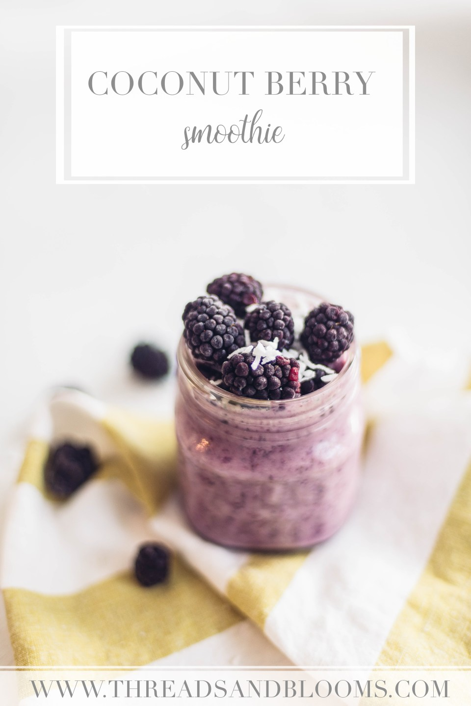Coconut Milk Smoothie Recipe with berries, vanilla, and coconut flakes