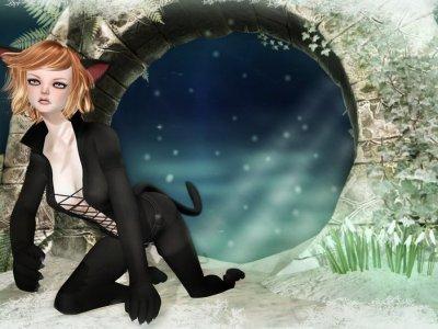 Dolly Kitty Cat