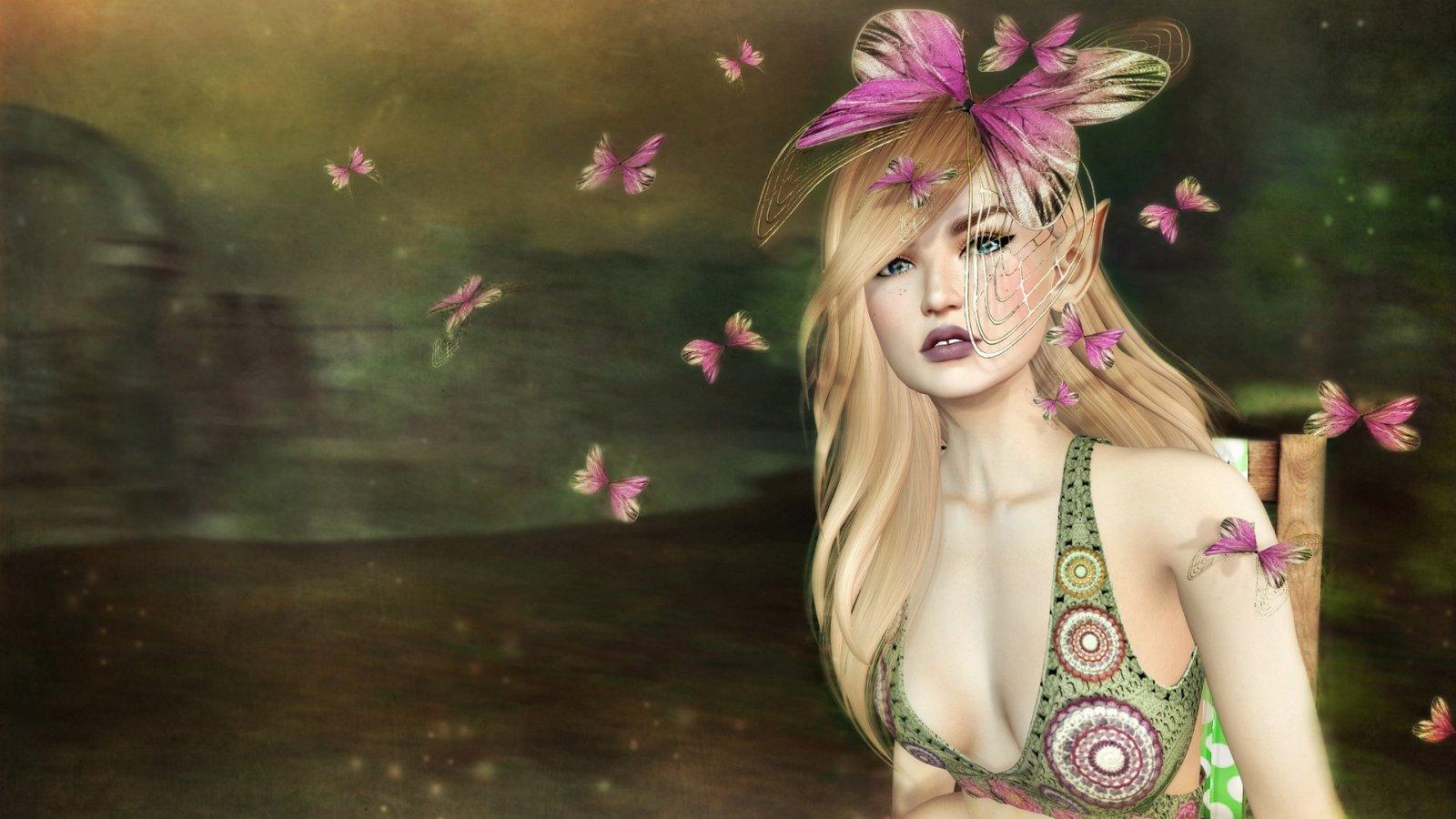 Astralia Butterflies
