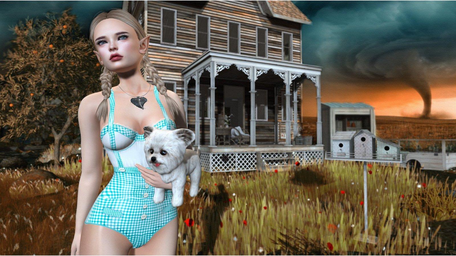 Hate You, Hate Kansas, Taking the Dog. Dorothy.