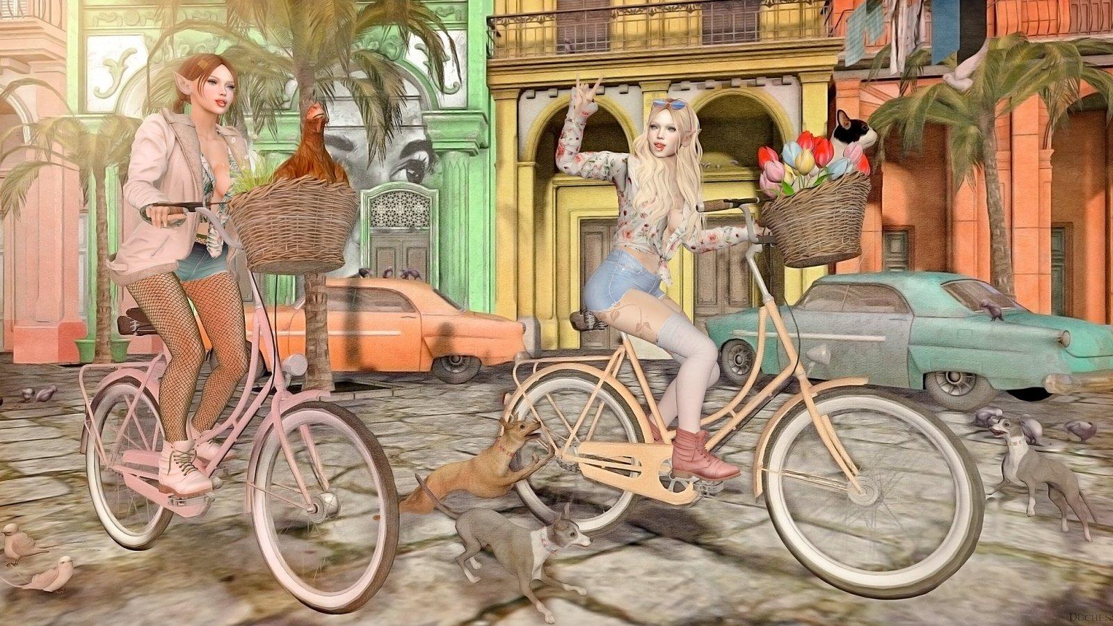 Spring in Havana