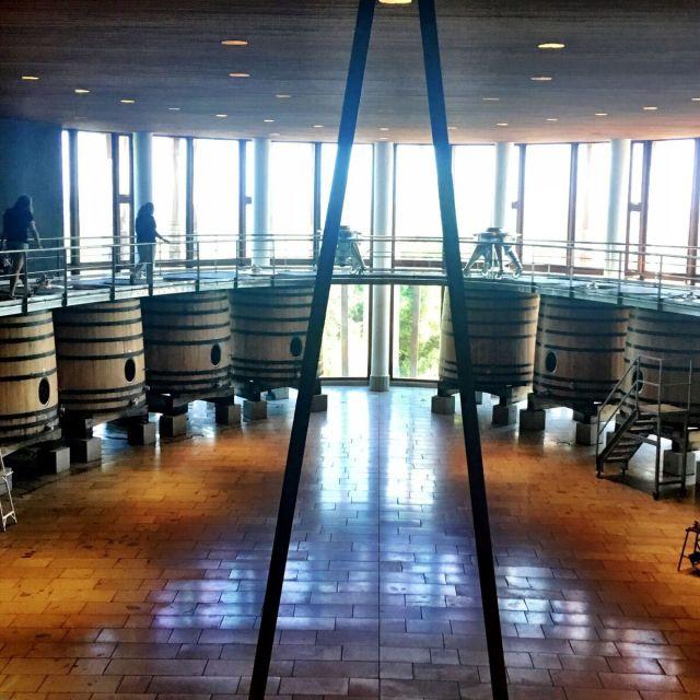ClosAlpataWineryBarrelRoom_Colchagua Chile_Chilean Wine Adventure_ThreadsandVino
