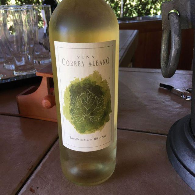 VinaCorreaAlbano_Curico Chile_Chilean Wine Adventure_ThreadsandVino