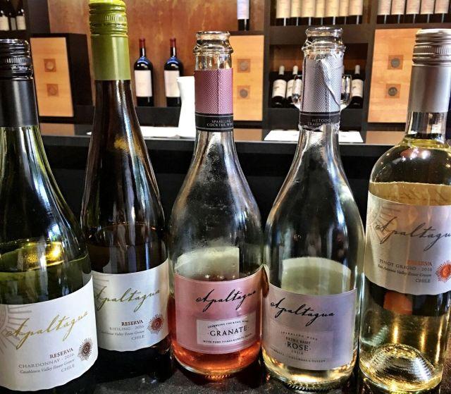 WineTastingatVinaApaltaguainColchagua_Colchagua Chile_Chilean Wine Adventure_ThreadsandVino