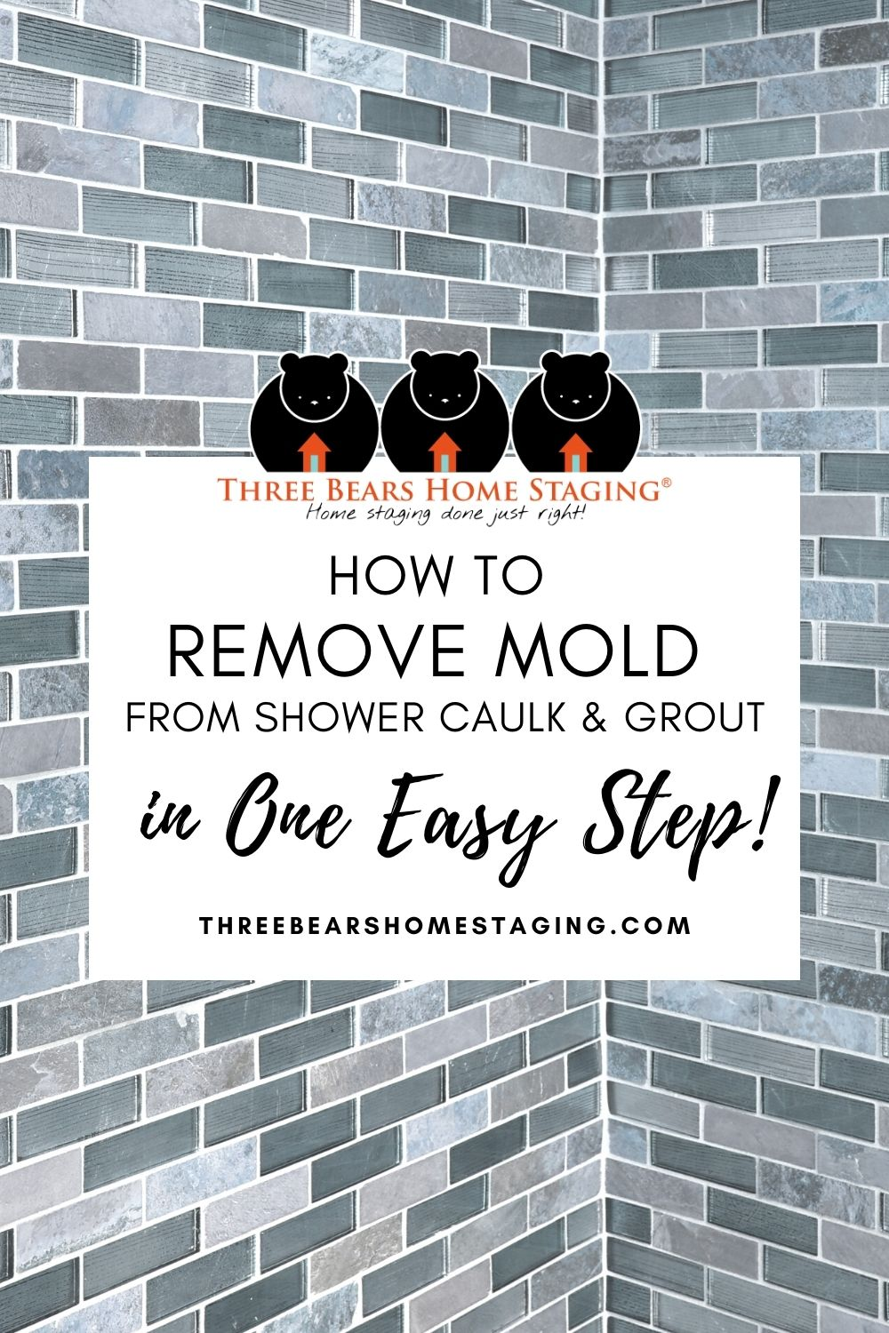 remove mold from shower