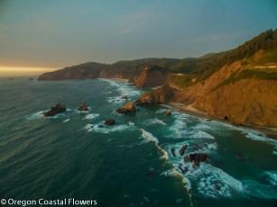Oregon Coast-1-2