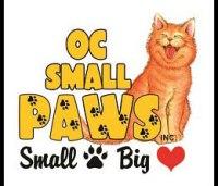 OC Small Paws Logo