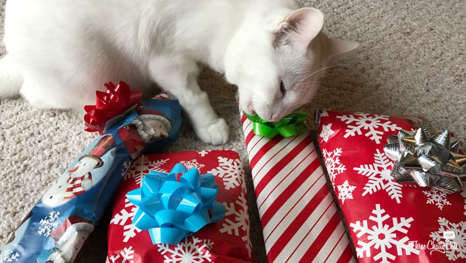 white cat opening presents