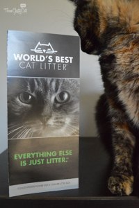 tortie cat with World's Best Cat Litter pamphlet