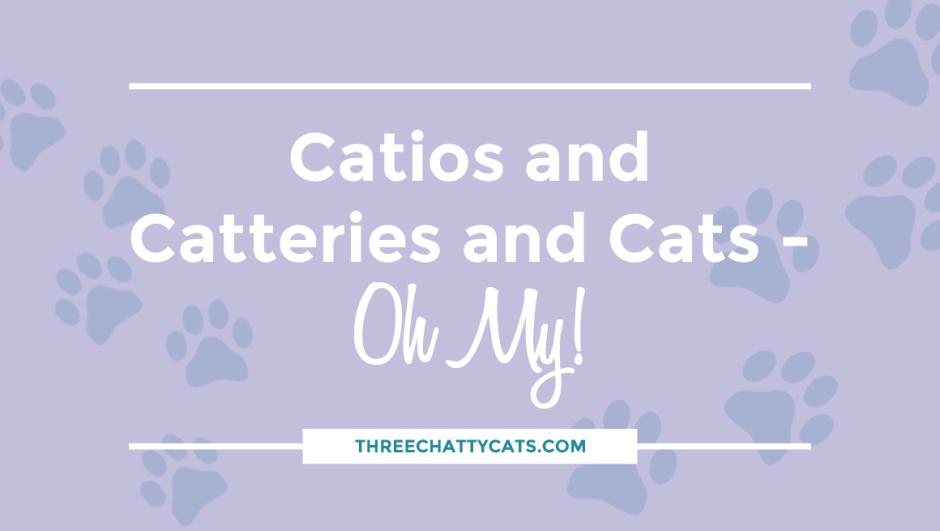 Catios and Catteries and Cats – Oh My!