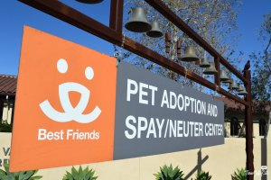 Best Friends Animal Society - Los Angeles