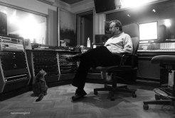 "Recording studio cat Athena | ""C-AT WORK"" by Marianna Zampieri"