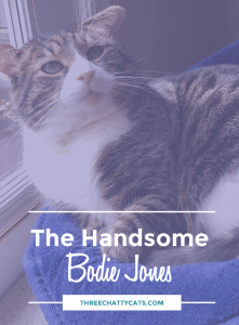 The Handsome Bodie Jones