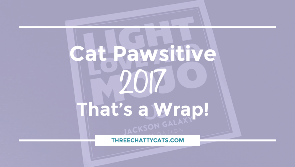 Cat Pawsitive