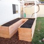 Raised Garden Bed Three Dog Kitchen
