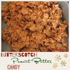 https://threegallonsofcrazy.com/2016/12/13/butterscotch-peanut-butter-candy/