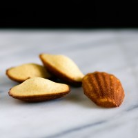 Orange Blossom Madeleines