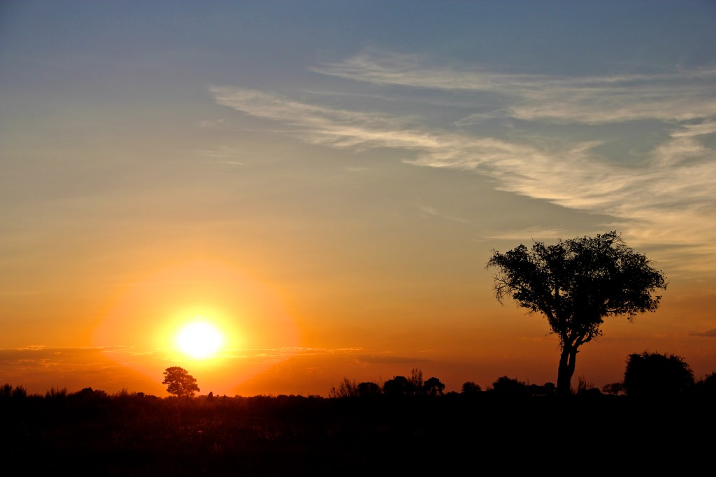 Sunset in the Okavango Delta