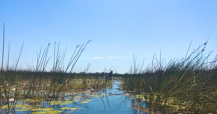 300 Days: Okavango Delta & Chobe Adventure