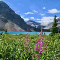 Canadian National Park Passes: When and Why You Need One